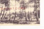 PONT CHATEAU  /  LES SAPINS DE GRENEBO - Pontchâteau