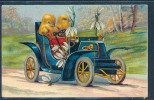 Poussin, Auto, Automobile, Voiture, - Other
