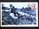 SARDEGNA -NUORO -ORTUERI -F.P. LOTTO N°126 - Nuoro