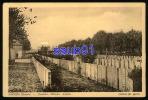 Daours -  Cimetière Militaire Anglais  -  Guerre 1914-1918   - Réf : 21440 - Autres Communes