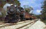 Texas State Railroad Locomotive No. 201, 4-6-0, Built 1901- Mary Jane's Railroad Spec. Inc. Unused - Trains