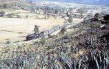 Ferrocarriles Nacionales De Mexico No 2125 At Horshoe Curve, Mexico, 1961 - Mary Jane's Railroad Spec. Inc. Unused - Trains