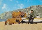 ANIMALS - AK 94700 Cow / Cattle - Nazaré - Waiting The Returtn Of Boats - Vaches