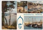 29 - DOUARNENEZ - TREBOUL: Plages Du Ris, Saint-Jean, Port De Plaisance, De Pêche. Multi-vues - CPSM - Douarnenez