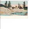 Yellowstone National Park Grotto Geyser Formation Upper Geyser Basin Tuck No 2444 - Yellowstone