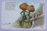 H. Schmidt  - GRUSS AUS BOLLENOPOLIS 3 Cartes - Otros Ilustradores