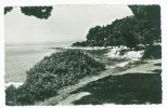 Postcard - Rovinj, Island Catarina    (4446) - Croatie