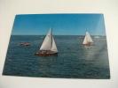 Nave Ship Barche A Vela  Versilia Bella Toscana Italy - Barche