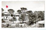 04428-LI-13-LA COTE BLEUE-LA COURONNE-Colonie De Vacances De Tamaris - France
