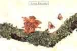 Original Anne Geddes Postcard, Postkarte, Carte Postale, New, Baby, Children, Butterfly, Bough - Unclassified