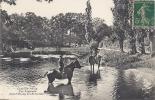 Chaville-Vélizy- Baignade Dans L'étang Des écrevisses - Chaville