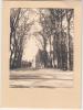 92 - Sceaux - Carte Portefeuille - Allée De La Duchesse - Editeur: Maupoint - Sceaux