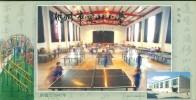 Table Tennis Ping Pong  Tennis Tavolo  ,     Prepaid Card Postal Stationery - Tafeltennis