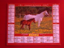 Calendrier ALMANACH PTT DU FACTEUR - LA POSTE - 2002 - Chevaux Et Chiens - OLLER - Sarthe 72 - Très Bon état - Calendarios