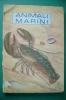 PEG/42 B.Morris Parker - G.K.McCosh ANIMALI MARINI Ed.Janus 1957/CONCHIGLIE/SHELL - Animali Da Compagnia