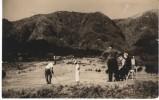 Sengokubara Golf Course, Hakone Japan Area, C1940s/50s Vintage Real Photo Postcard - Golf