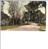 Shell Beach Road Lake Charles Louisiana Postmark - Other