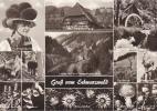 18865 GRUB Vom SCHWARZWALD ; Schwarzwaldhaus Ravennabrucke. Werner L/201