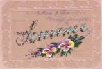 """18880 Carte Sur Rodhoide, Transparente, Peinte ; """" Souvenir """" Fleur Myosotis 1905"""