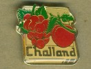 PINS CHALLAND RAISIN TOMATES - Alimentation