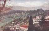 ADV: Ridgways Tea, Darjeeling & The Snows, India, No. 13, Asia, 1910-1920s - India