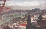 ADV: Ridgways Tea, Darjeeling & The Snows, India, No. 13, Asia, 1910-1920s - Indien