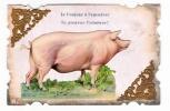 GROS  COCHON  TOUT  ROSE  !  ( Superbe Fantaisie Avec Ajoutis Chromolithé Et Frises Dorées ) - Pigs