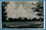 SCOUTISME --  Jamborée 1947 - N° 5 - Scoutisme