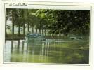 34 Promenade Sur Le Canal Du Midi  Bâteaux Péniches  à L´ombre Des Platanes Centenaires... Non Circulé N °109  TBE - France