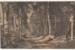 CPA 95 Forêt De Carnelle Sous Bois De La Pierre Turquoise - Saint-Martin-du-Tertre