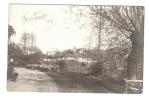 Carte Photo - 45 - Loiret - Courtenay - Route Mocquesouris, Avec Moutons Et Bergère Et Chien  - Village à Droite - Courtenay