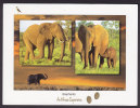 South Africa PPC Elephants An African Experience 1999 - Südafrika