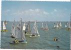 Nieuwpoort - Yachting Aan De Noordzee / Lander - Nieuwpoort