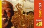 NIGER PREPAYEE PREPAID CARD CELTEL 5000 CFA  VIEUX OLD MAN CORN MAIZE SORGHO MIL MILLET - Niger