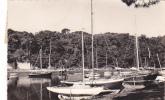 19016 Vannes Port De Conleau. 9019 éd Glatigny; Bateau Voilier - Vannes