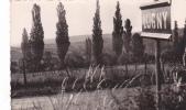 19070 Lugny Les Peupliers.  Sans éd; Cpsm Petit Format . Pancarte