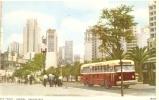 BRASIL . SAO PAULO . AVENIDA ANHANGABAU . Autobus Années 50 / 60 - São Paulo