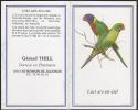 KALENDER 1993 - Vogel Papagei Wellensittich - CALENDRIER Oiseau PERROQUET - Calendar With PARROT Bird - 03 - Calendars