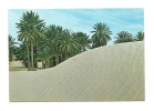 Cp, Tunisie, Sahara, Voyagée 1979 - Túnez