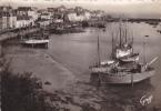19093 Douarnenez : Le Port . 645 Greff -bateau Peche, D3527 A1019? D3131 - Douarnenez