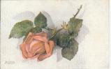 CPA Raphaël TUCK  Oilette Rose Rose Fleur Flower - Tuck, Raphael