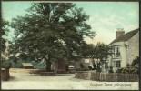 """""""Dunham Town, Altrincham"""",  C1910 - England"""
