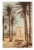 EGYPTE  /  KARNAK  /  PTOLEMY  GATEWAY  OF  EUERGETES  I.  /  Copyright  By  LEHNERT & LANDROCK  Succ. Cairo  N° 106