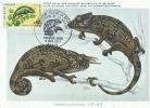 D05111 CARTE MAXIMUM CARD CM MC TRIPLE1971 FRANCE CHAMELEON  CP MUSEE ORIGINAL - Reptiles & Amphibians