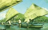 Fishing Boats Of Legaspi Albay - Filippijnen
