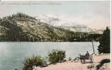 DONNER LAKE CALIFORNIA 603 SHOWING S P CO'S SNOW SEEDS (ATTELAGE CHEVAL PP) - Etats-Unis