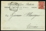 1900 Italy. Postal Card. Trino 1.Dec.00 (Novara).  (G15b022) - 1878-00 Umberto I