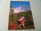 Viaduc Du Chemin De Fer A Cremaillere Du Montenvers.. Vallee De Chamonix - Ouvrages D'Art