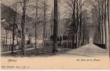 Namur - Le Parc De La Plante - Namur