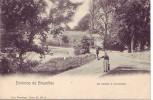 TERVUEREN = Environs De Bruxelles = Un Chemin - Carte Animée (Nels  Bxl  S.11  N° 2) 1912 - Tervuren